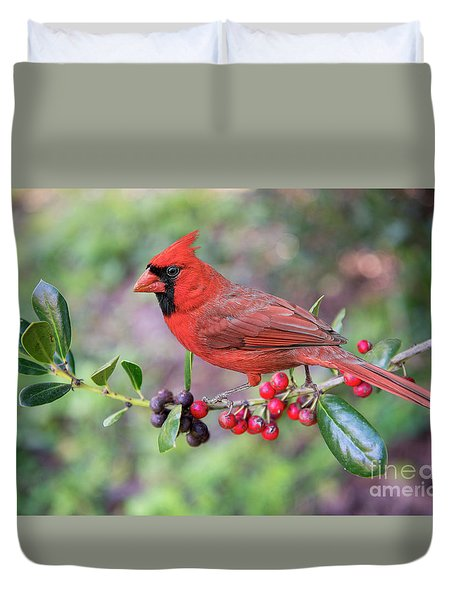Duvet Cover featuring the photograph Cardinal On Holly Branch by Bonnie Barry