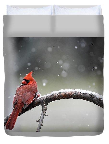 Cardinal Snowfall Duvet Cover