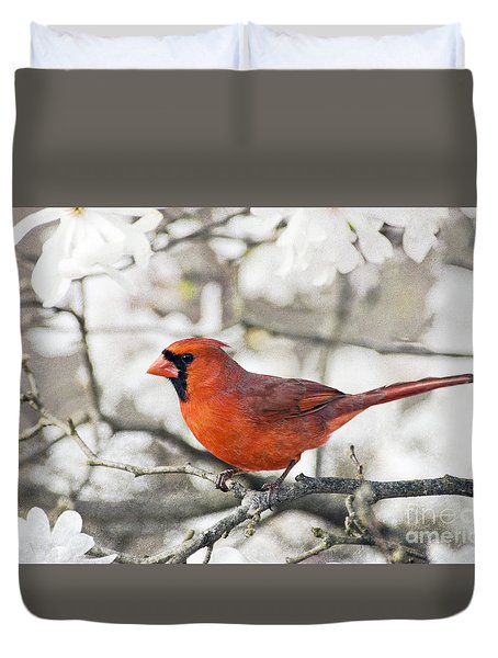 Duvet Cover featuring the photograph Cardinal Spring - D009909-a by Daniel Dempster
