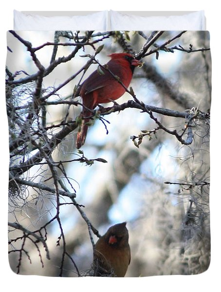 Cardinals In Mossy Tree Duvet Cover