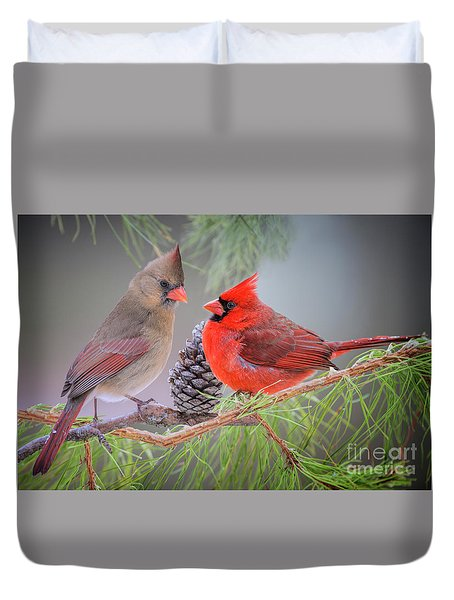 Cardinals In Pine Duvet Cover
