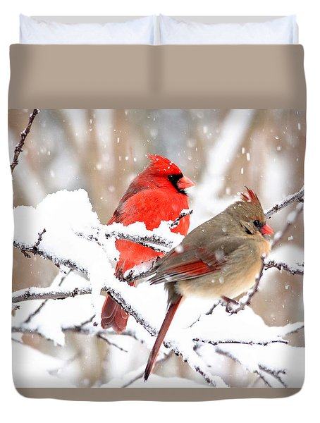 Cardinals In The Winter Duvet Cover by Trina Ansel