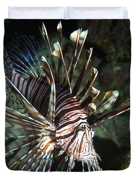 Caribbean Lion Fish Duvet Cover