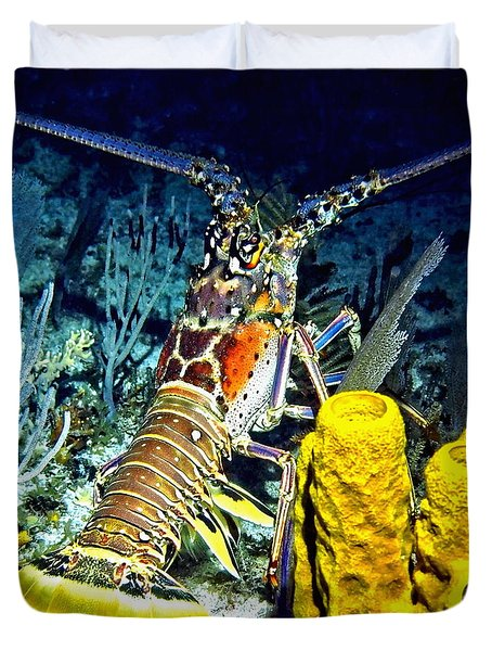 Duvet Cover featuring the photograph Caribbean Reef Lobster by Amy McDaniel