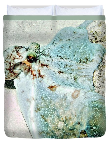 Duvet Cover featuring the photograph Caribbean Reef Octopus - Eyes Of The Deep by Amy McDaniel