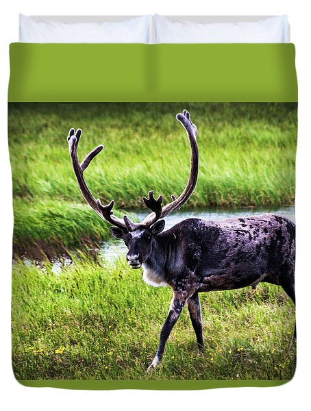 Duvet Cover featuring the photograph Caribou by Anthony Jones