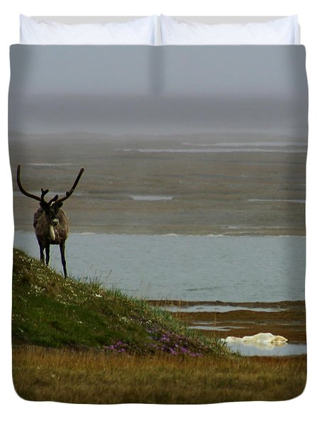 Caribou Fog Duvet Cover by Anthony Jones