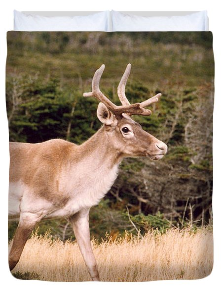 Duvet Cover featuring the photograph Caribou by Mary Mikawoz