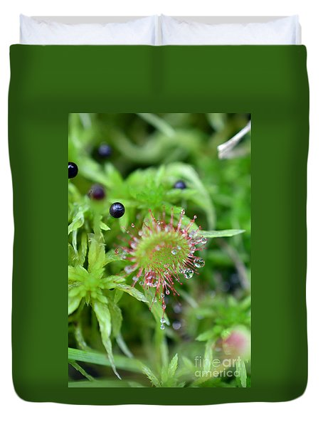Carnivorous Sundew Duvet Cover by Lila Fisher-Wenzel