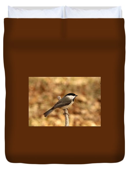 Carolina Chickadee On Branch Duvet Cover
