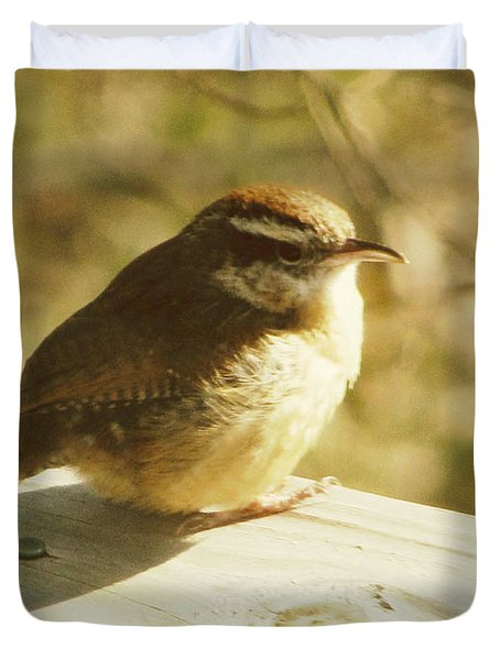Carolina Wren Duvet Cover by Amy Tyler