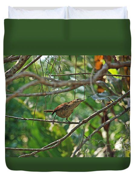 Duvet Cover featuring the photograph Carolina Wren by Terri Mills