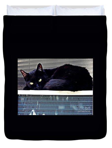 Cat Conditioner Duvet Cover