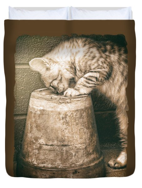 Cat Curiosity... Duvet Cover