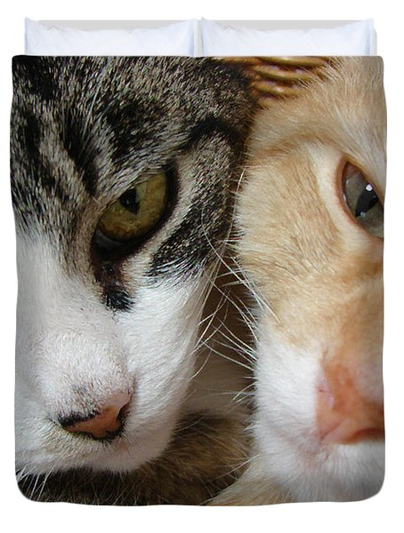 Cat Faces Duvet Cover