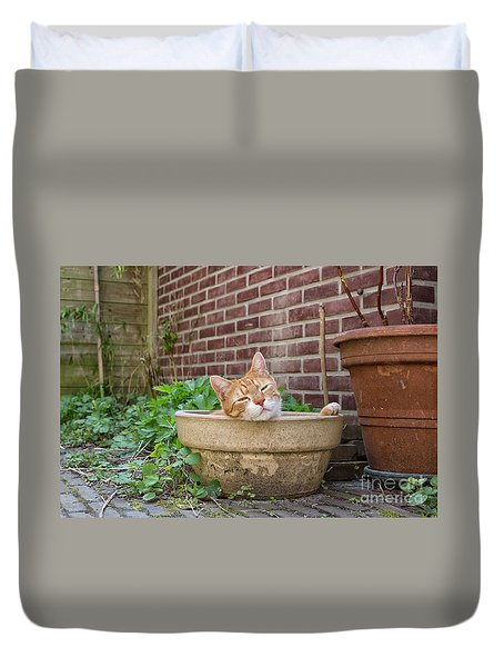 Duvet Cover featuring the photograph Cat In Empty Pot by Patricia Hofmeester