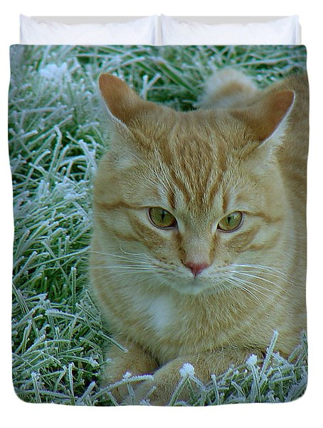 Cat In Frosty Grass Duvet Cover by Shirley Heyn