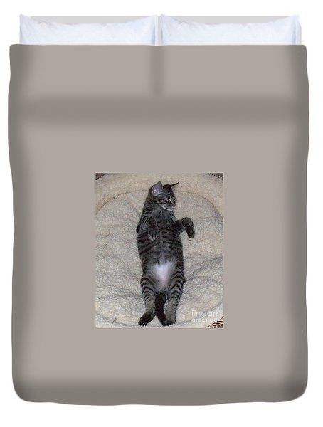 Cat In Repose Duvet Cover