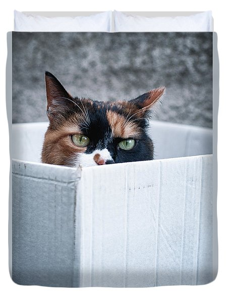 Duvet Cover featuring the photograph Cat In The Box by Laura Melis