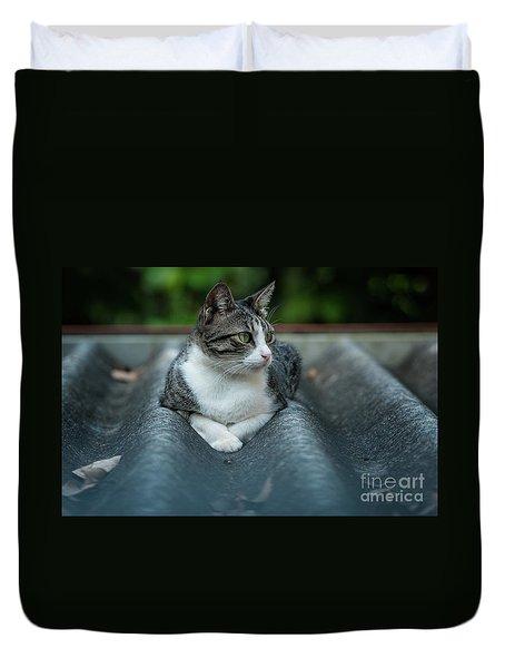 Cat In The Cradle Duvet Cover