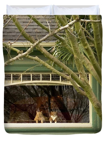 Cat Pals Waiting Duvet Cover