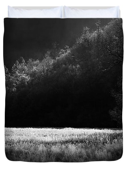 Cataloochee Morning Duvet Cover by Gray  Artus