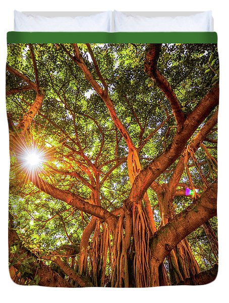 Duvet Cover featuring the photograph Catch A Sunbeam Under The Banyan Tree by D Davila