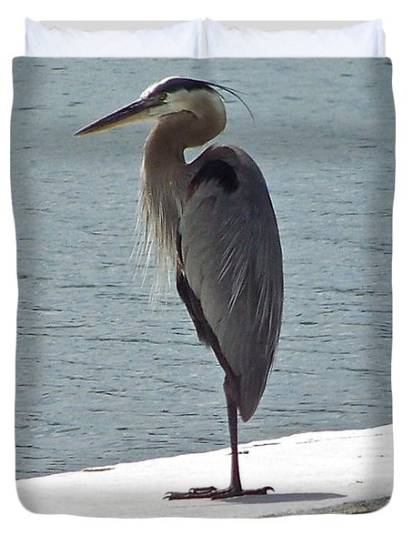 Duvet Cover featuring the photograph Catching Some Morning Rays by Carol  Bradley