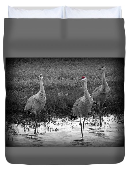 Catching The Red Eye Duvet Cover