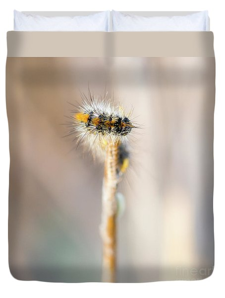Caterpillar On The Stick Duvet Cover