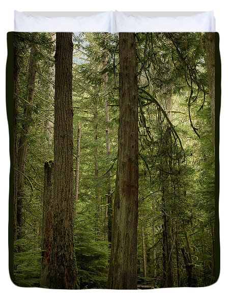 Cathedral Grove Duvet Cover