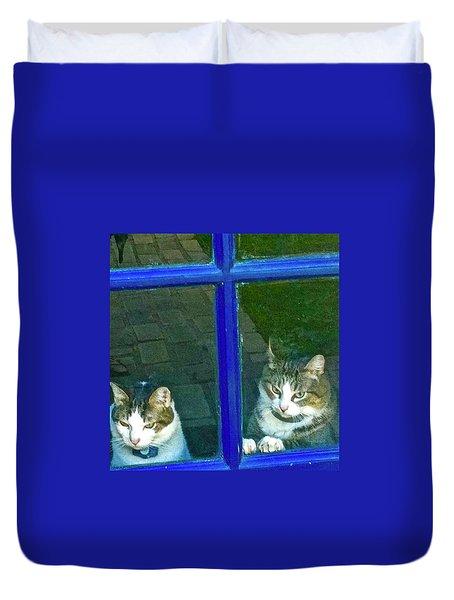 Cats On Baylor Street Duvet Cover