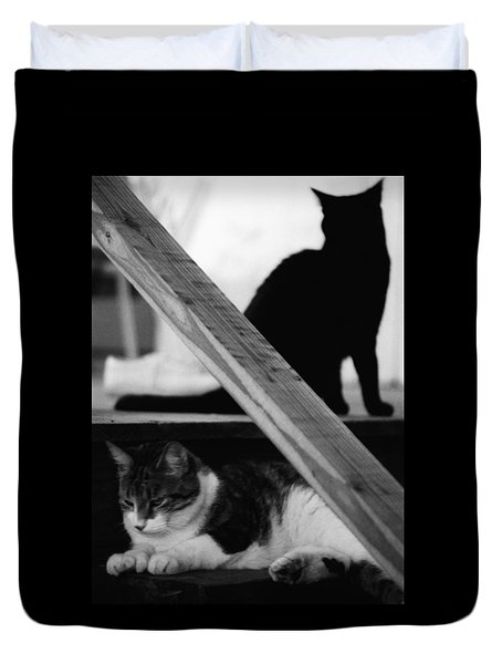Cats Pose For Money And Fame Duvet Cover