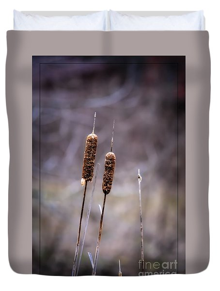 Cattails Duvet Cover by Brenda Bostic
