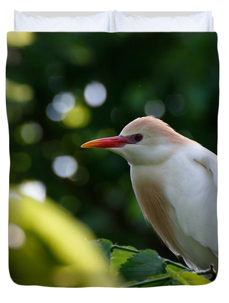Cattle Egret In Oklahoma Duvet Cover