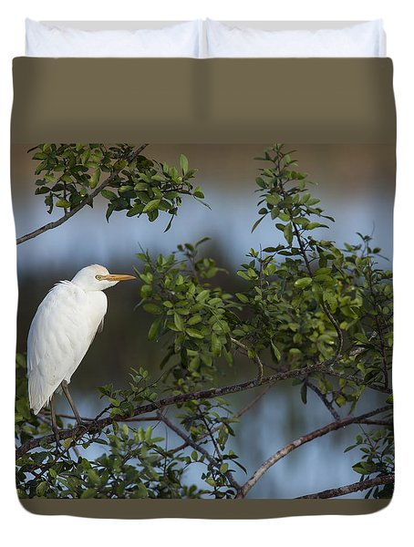 Cattle Egret In The Morning Light Duvet Cover