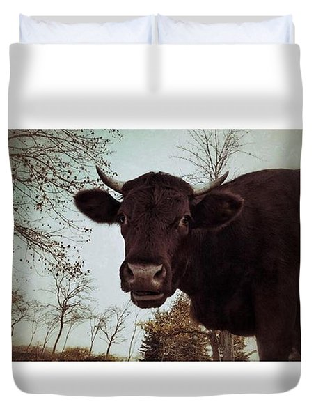 #cattle #kuh #rind #weide #herbst Duvet Cover
