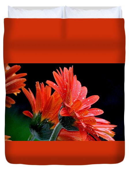 Duvet Cover featuring the photograph Caught In The Rain by Betty-Anne McDonald