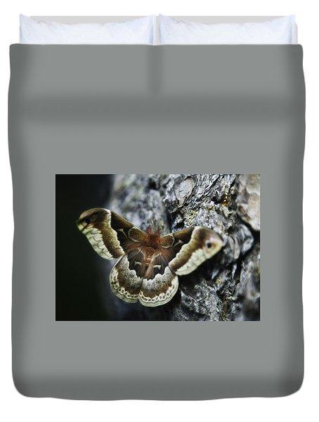 Cecropia Moth Duvet Cover