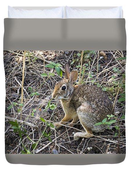 Cedar Hill Bunny Duvet Cover by Ricky Dean