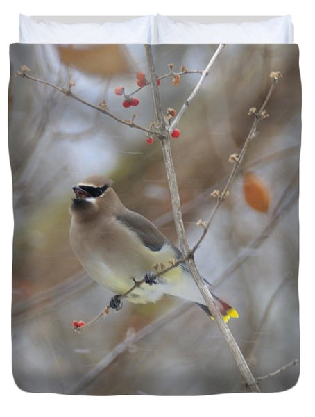 Cedar Wax Wing 2 Duvet Cover
