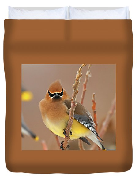Cedar Wax Wing Duvet Cover