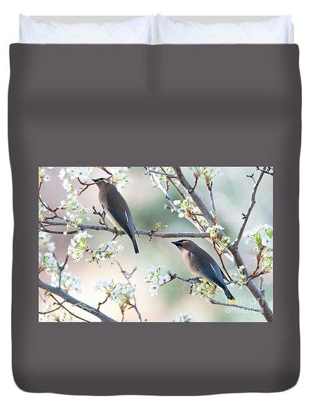 Cedar Wax Wing Pair Duvet Cover by Jim Fillpot
