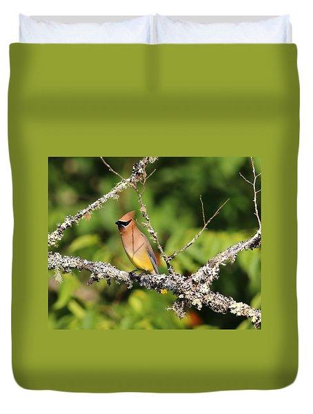 Cedar Waxwing  Duvet Cover