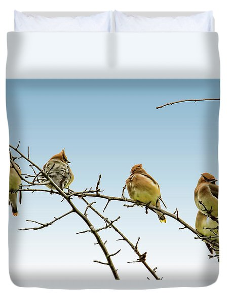 Cedar Waxwings Duvet Cover