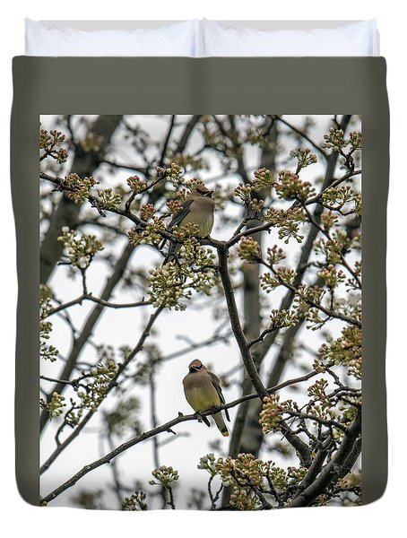 Cedar Waxwings In A Blossoming Tree Duvet Cover