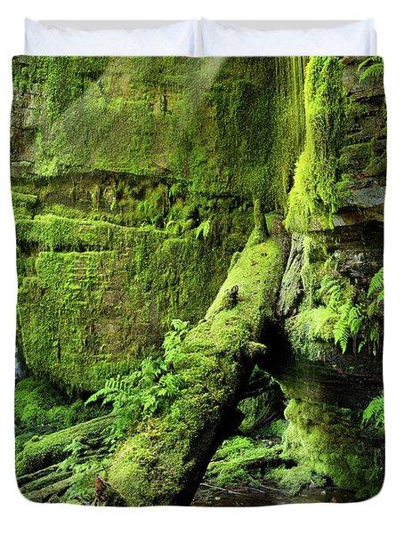 Centennial Falls Mist Duvet Cover by Leland D Howard