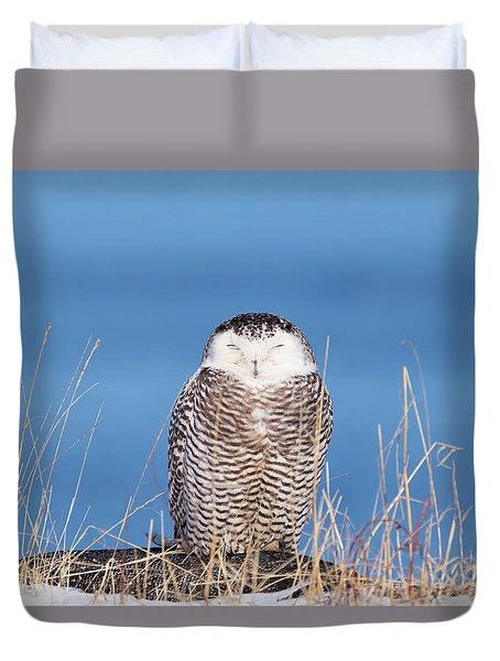 Centered Snowy Owl Duvet Cover