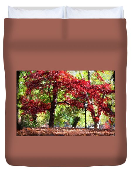 Central Park In Manhattan Duvet Cover
