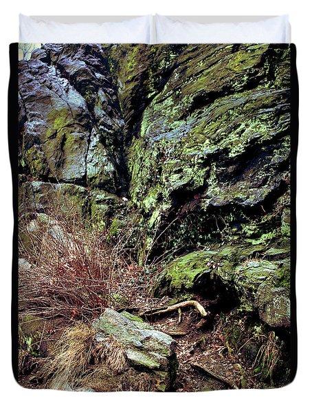 Central Park Rock Formation Duvet Cover